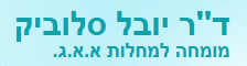 screenshot-www slovik co il 2014-09-02 11-16-23-logo